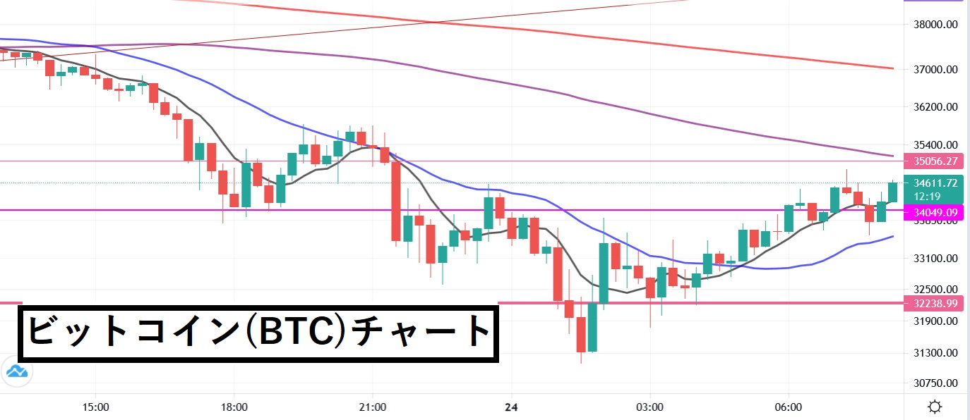 【5/24】ビットコインが上がるまで、売りトレードをし続けます!