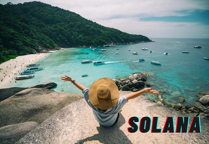 ソラナサマー(Solana Summer)とは?ソラナが生んだひと夏の夢